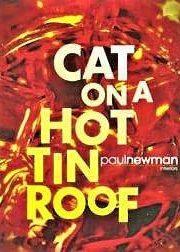 گربه روی شیروانی داغ