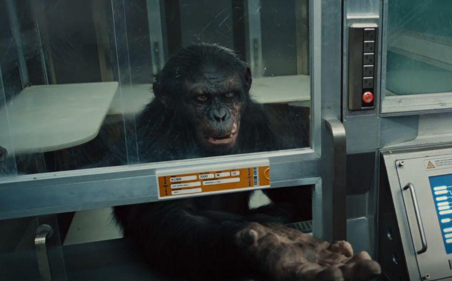 دانلود فیلم Rise Of The Planet Of The Apes 2011 با دوبله فارسی