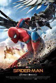 مرد عنکبوتی : بازگشت به خانه